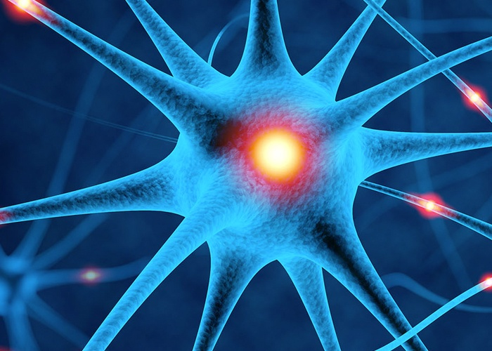 Best Neurology Hospitals in Udaipur