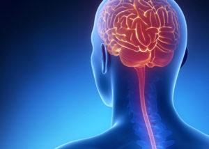 Neurosurgery in Udaipur