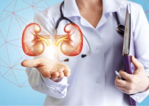 Nephrology Kidney Treatment Udaipur